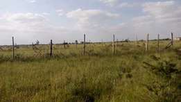 "80"" by 50"" Plot on Sale in Malaa 500mts off kangundo road"