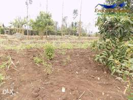 Quick Sale :Kabati Prime 1/8 acre for sale