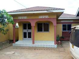 Two wide self contained bed room house at 500000 in Namugongo- Mbalwa