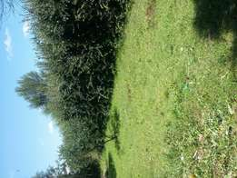 1/4 at maili nne with title deed with structures rent 16000
