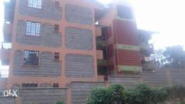 Kiamumbi 50by100 plot at 3m