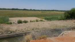 Vacant land for sale in upmarket area