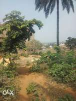 2 Plots in Ifite Awka for Sale