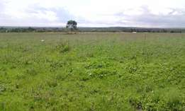 2 parcels of 10 acres daiga nyariginu at 450k/acre