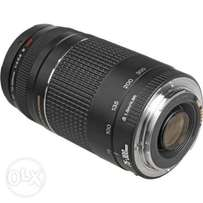 Looking for Canon Telephoto lens