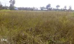 Plots for sale in Sunrise Estate Njoro Nakuru