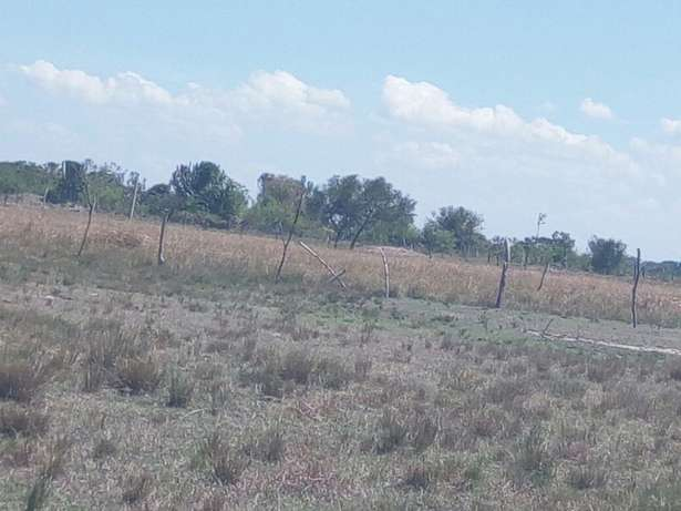 Prime and genuine plots for sale Sagana - image 3