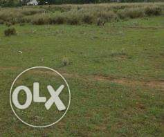PRIME 40 Acres for SALE at ISINYA