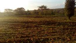 50*100 Plot in Kwavonza