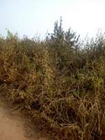 12 Acres of land with c/o for sales at Crawford university road