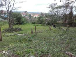 100x100 land in vetinary in ngong