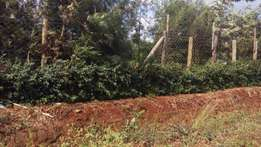 Kiambu 1/2 acre residential plot 20M