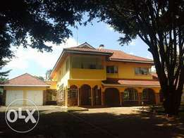 Executive 7br with 2sq own Compound to let in lavington
