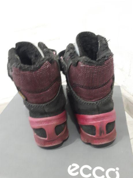 02f99a328f2ccb Сапожки Ecco Biom зимние термосапоги ботинки экко Дніпро - зображення 3