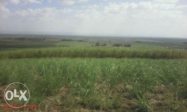 Land for sale in kibos kisumu Kisumu CBD - image 2