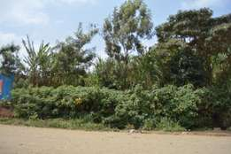 Githurai: Prime 1/4 Acre Plot.