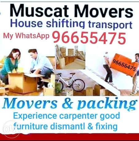 Professional movers and carpenter services gx