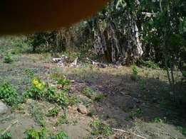 2plots for sale behind CBN in Ado