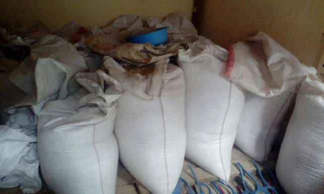 90 Kg bag of maize Maili Saba - image 4