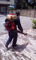 Cleaning and fumigation service