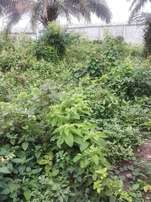 A plot of land measuring 662 sqm for sale near Chevy view estate,lekki