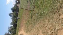 Residential Plot in bungoma