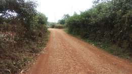 1 acre for sale in muongoiya
