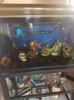 150LT Fresh Water Tropical Tank