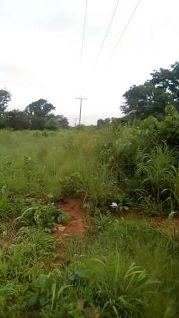 30plots of land located in Ugwuogo nike Enugu East Nigeria Enugu North - image 2