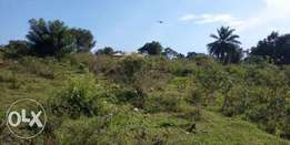 1200 acres of farm land for sale in mawogola sembabule