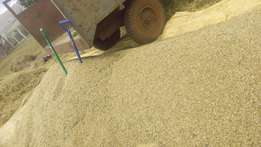 Rhodes grass and oat seeds for sale