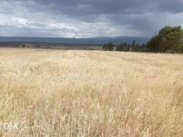 Land for lease 18acres at 9k