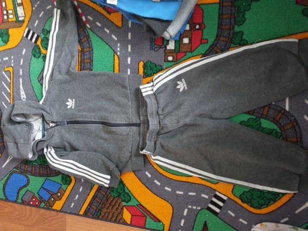 Dres Adidas 80 OLX.pl