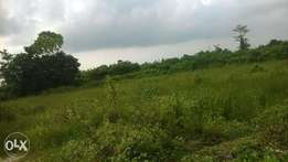 commercial Land for Sale in Abijo G. R. A, Ajah