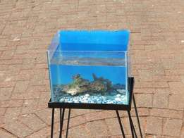 Fish Tank with stand and stones just needs a pump