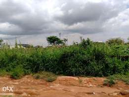 Strategic Located Land 100 by 100 for Sale at Ebo Gra, Before Arougba