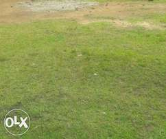 Prime 1.25 Acres Touching Eastern bypass at Kamakis -Kshs.100M