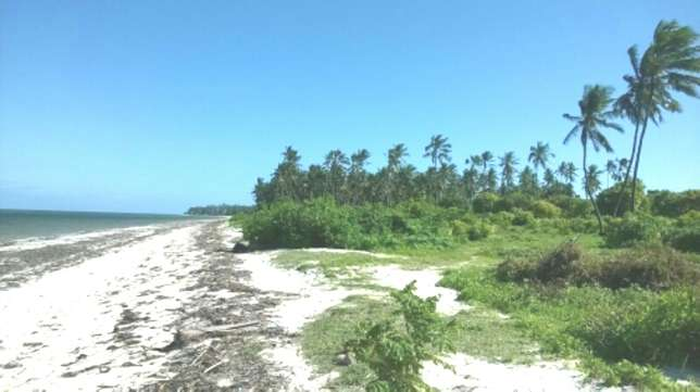 7 Acres Beach Plot For Sale in North Coast Mombasa With Clean Title Kilifi - image 3
