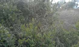 2acres for sale in nyeri