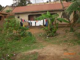50x100 at 25m negotiable with aggreement in Kakajjo - Bweyogerere