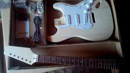 Strat and Tele complete diy kits