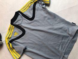 72bba014a54bda Adidas koszulka Predator - 152 piłka nożna