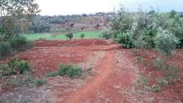 1/2 Acre slightly bigger for 1.5m along Kutus-Kagio road