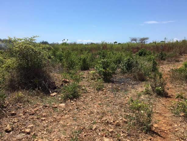 Two 2.5 acres plots in galu kinondo beach on row 3 and 4 for sale Mombasa Island - image 3