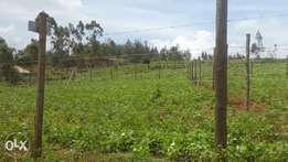 50x100 Plot at Kikuyu- Kamangu