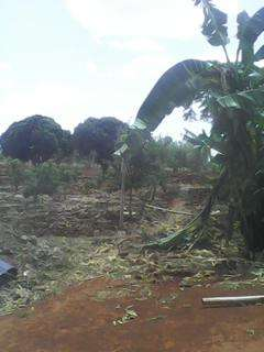 Sale of 5 acres at Rwika junction well developed Embu Town - image 8