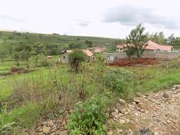 Thika Ngoingwa 50x100 plot for sale