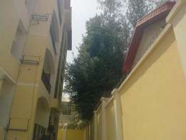 Very lovely and neat serviced 2 bedroom flat for rent in wuse 2