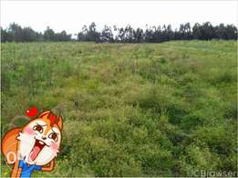 5 acres for lease in nyandarua ol ou