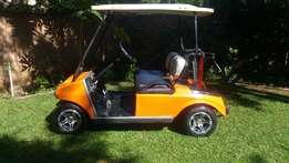 48V electric golf cart for sale